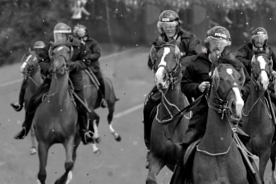 The Orgreave Horses by Phil Williams