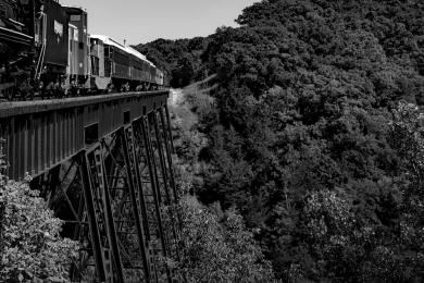 The Railway by Martin Parfitt
